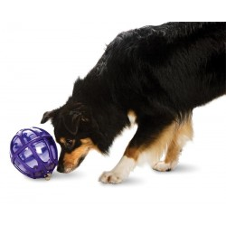 Kibble Nibble™ (XS/S) Dog Activity Ball